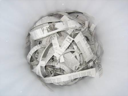 Shredded newspaper at the bottom of the bin
