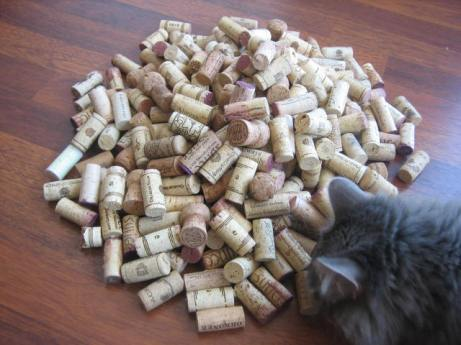 Corks, with aforementioned curious cat.
